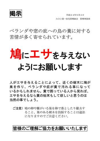 20120905_hato