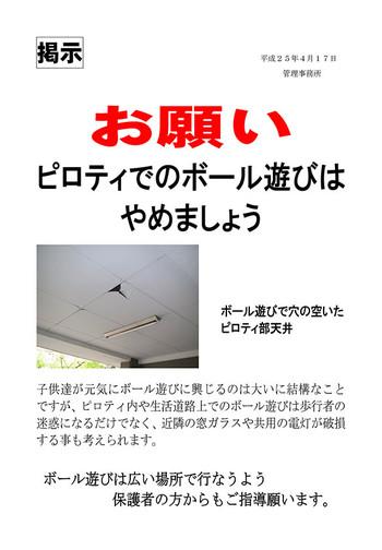 20130417_piroty