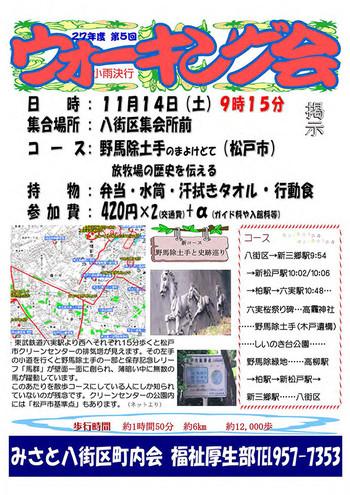20151114_walking